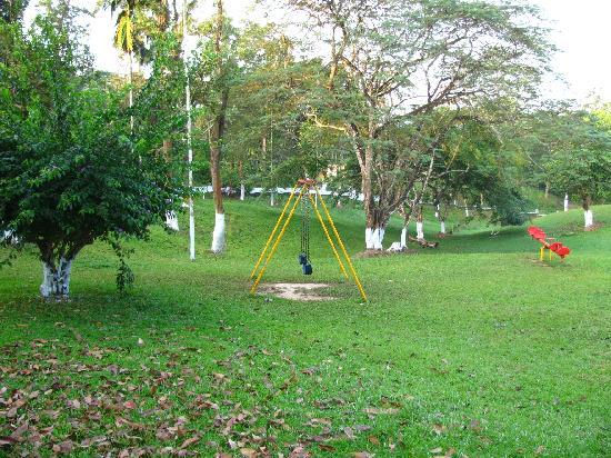Aranya Lodge: aranya lawn view 2
