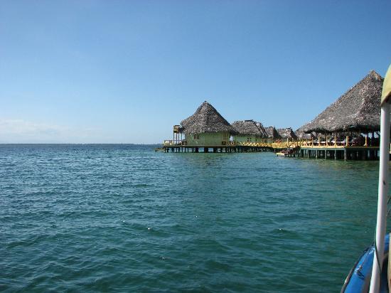 Punta Caracol Acqua Lodge: El Paraiso
