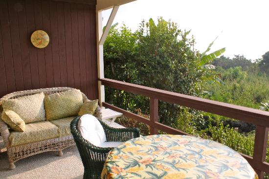 Hale Ho'ola B&B: Little Terrasse on the Palm suite