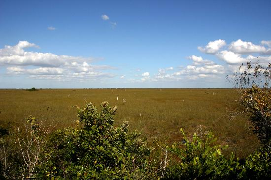 Everglades Nationalpark, FL: Pa-hay-okee Overlook