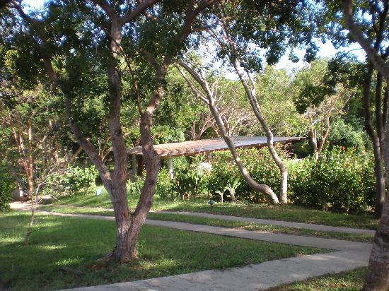 Hix Island House: The Grounds