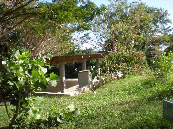 "Hix Island House: Yoga ""Hut"""