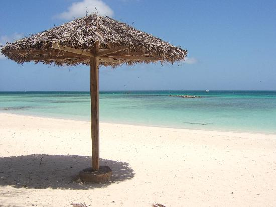 Aruba: How to keep out of the sun :-)