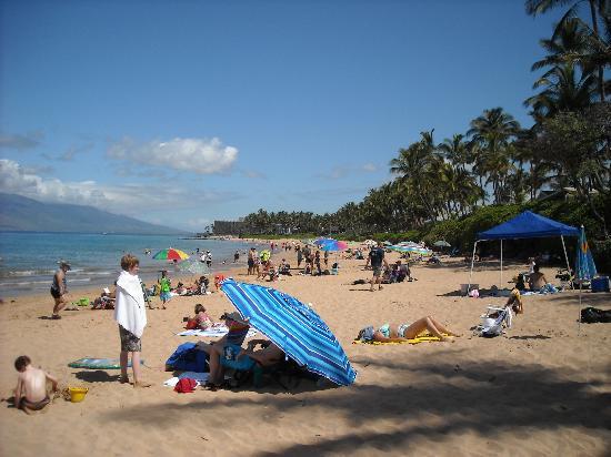 Keawakapu Beach: Typical day on beach