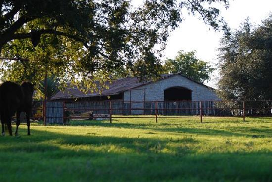 Hoof Prints Ranch: West side of barn
