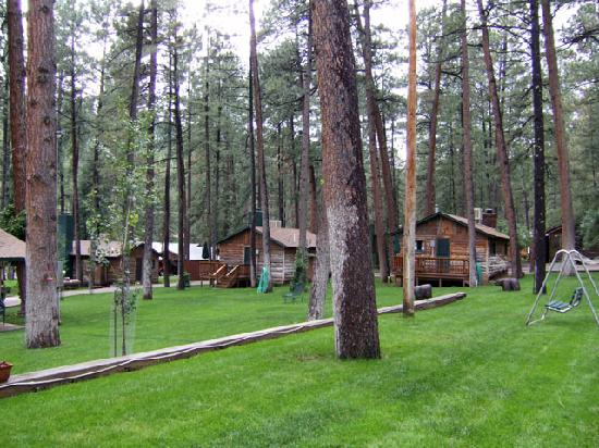Off the Back Porch Forest Home Cabins Ruidoso