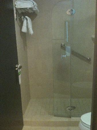 Hyatt Place West Palm Beach Downtown: shower