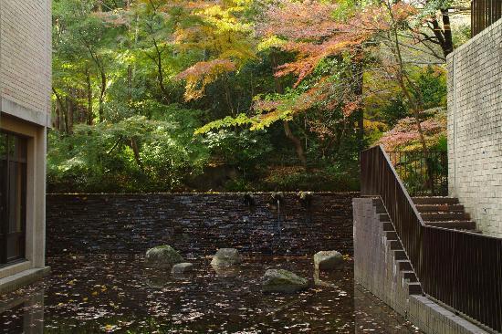 Machida City Museum of Graphic Arts : 美術館内部から芹ヶ谷公園を見た様子です。