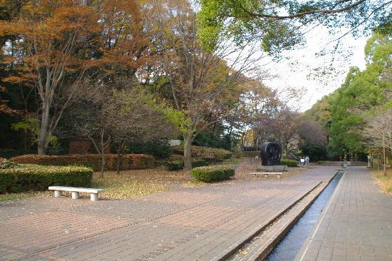 Machida City Museum of Graphic Arts : 建物の入口前から見た芹ヶ谷公園方面の景観です。