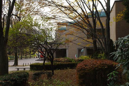 Machida City Museum of Graphic Arts : 芹ヶ谷公園から見た美術館の外観です。