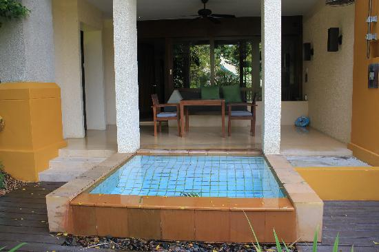 Tiny Plunge Pool on tiny ponds, tiny swimming pools, tiny spa pools, tiny fireplaces,