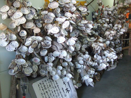 Tomakomai, Japan: ホッキ貝資料館