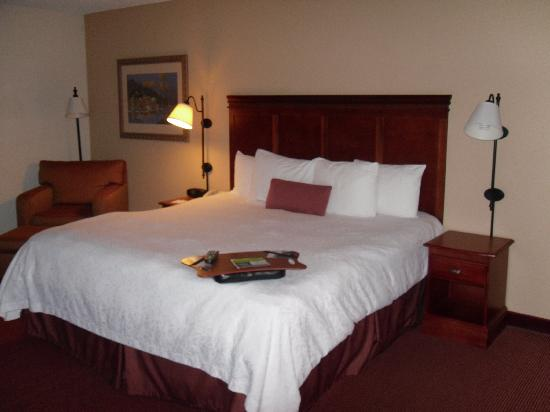 Hampton Inn Austin/Airport Area South: Bed