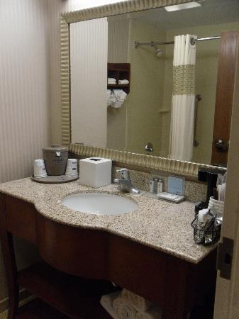 Hampton Inn Austin/Airport Area South: Bathroom