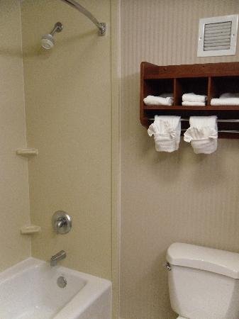 Hampton Inn Austin/Airport Area South: Bathtub