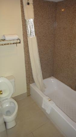Howard Johnson Express Inn Tallahassee: Salle de bain