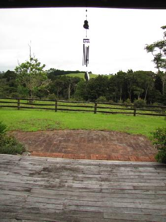 Wairoa Valley Bed and Breakfast: morning
