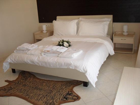 Kyknos De Luxe Suites Hotel: Standard Double Room