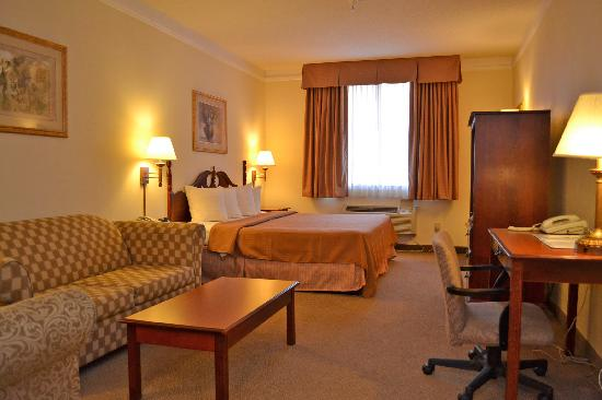 Econo Lodge Inn & Suites: King Suite
