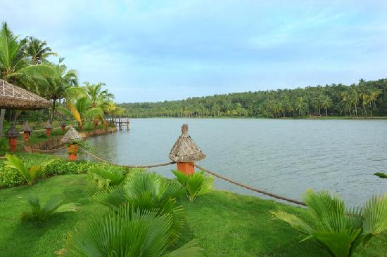 Fragrant Nature Backwater Resort & Ayurveda Spa : Lake view