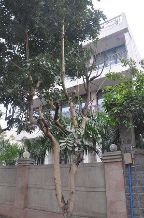 Park Lane Gurgaon
