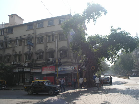 Photo of Victoria Hotel Mumbai (Bombay)