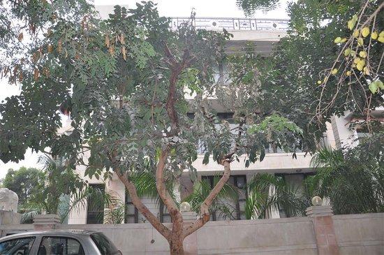 Park Lane Gurgaon : Park Lane