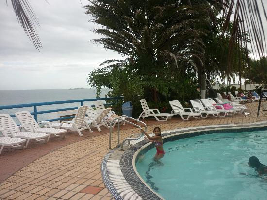 Pampatar, Venezuela: FLAMINGO 2