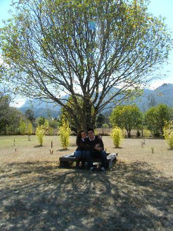 Hotel Bosques del Sol suites: el jardin de los BUNGALOWS DEL SOL