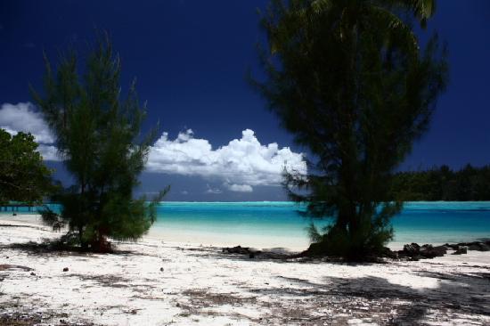 Hotel Hibiscus: Spiaggia a destra dell'Hibiscus