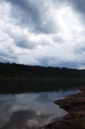 Scientific Monument Moises Santiago Bertoni : Rio Paraná