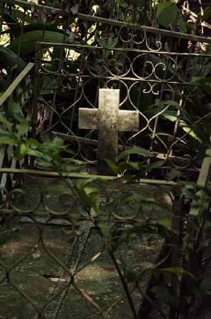 Scientific Monument Moises Santiago Bertoni : cementerio