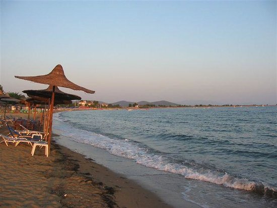 Philoxenia Bungalows: beach
