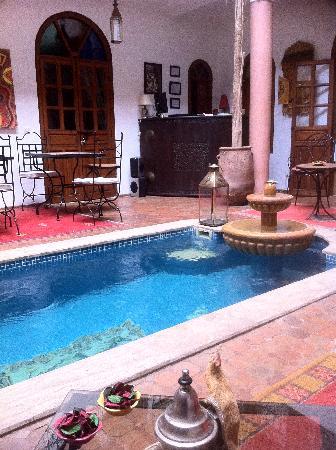 Riad Adika: Piscine et patio
