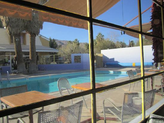 29 Palms Inn pool, viewed from inside restaurant - Picture