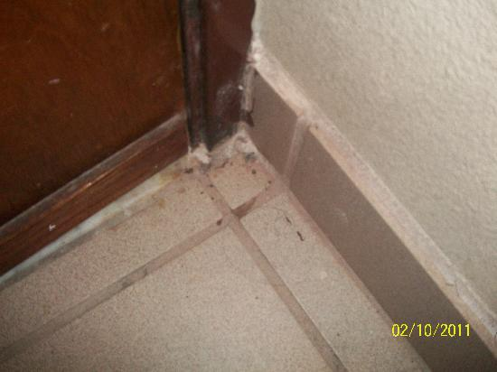 Econo Lodge Downtown : Dirty floors in bathroom, haven't been cleaned in a long time