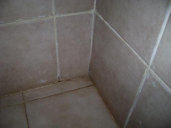 Suelo de la ducha de la habitaci n categor a superior - Suelos de ducha ...