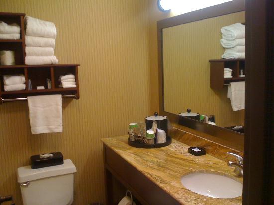 Comfort Inn: Roomy bathroom with plenty of counter space