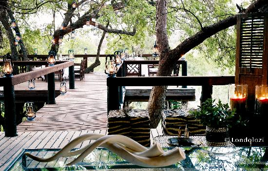 Londolozi Tree Camp Looking out to Deck