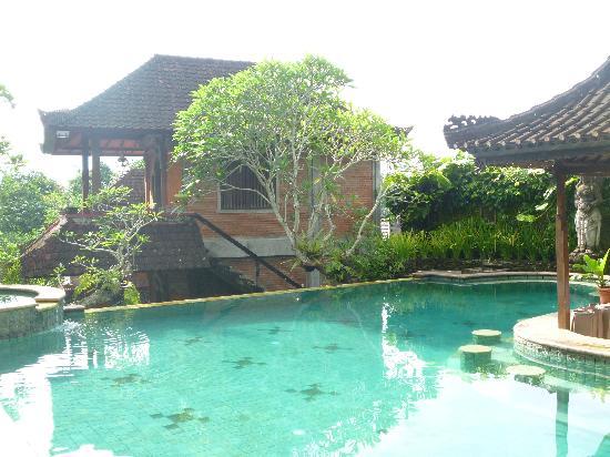 Ubud Bungalow: vu sur piscine et bungalow