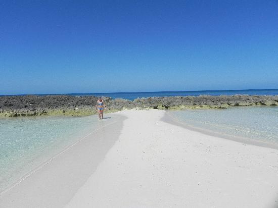 Melia Buenavista: Petite plage très calme