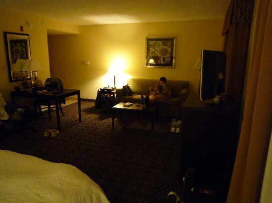 Hampton Inn & Suites Orlando - John Young Pkwy / S Park: Wohnbereich