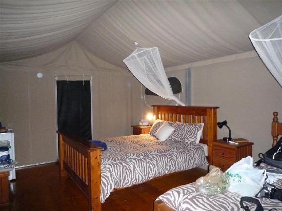 Mareeba, Australia: Tented accommodation