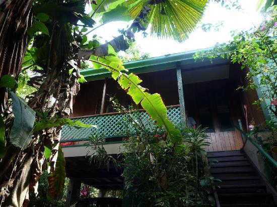 Cassowary House : Accommodation