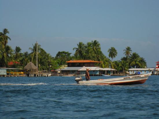 Carenero Island, Panama: Casa del Sapo next to the gas station