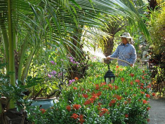 Mairood Resort : The garden