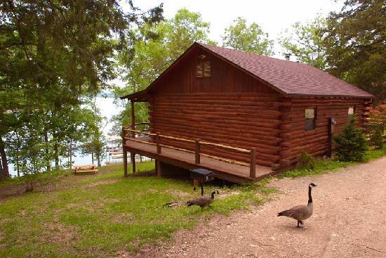 Coxy Log Cabin Decor Picture Of Lake Shore Cabins On