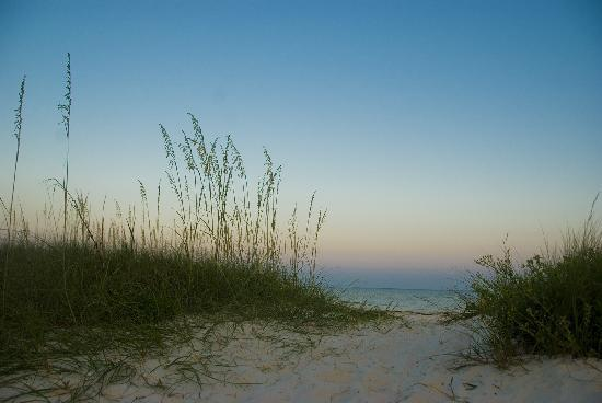Carrabelle Beach, an RVC Outdoor Destination: Path leading to the beach