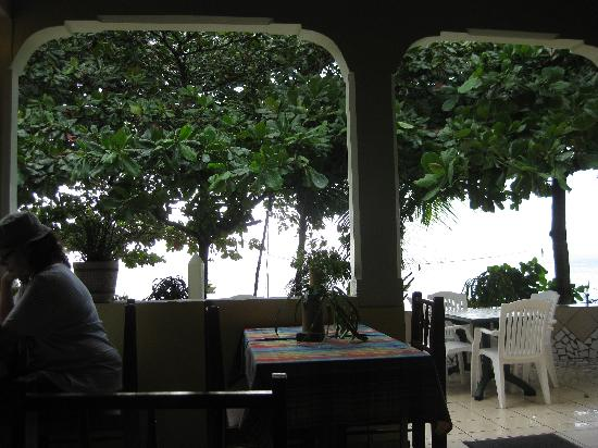 Sunset Bay Club & SeaSide Dive Center : The view from the dining area.