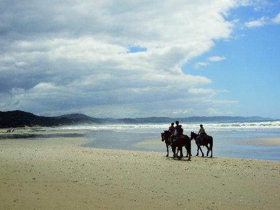 Buccaneers Lodge & Backpackers: Riding on Cintsa Beach